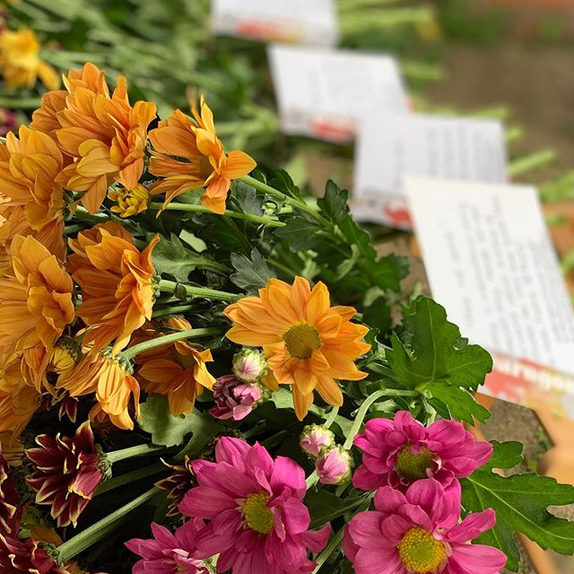 Today is international lonely bouquet day. The idea is to leave flowers somewhere for people to find. Today I've left 4 bouquets around for the people of Lymm. I hope they bring a smile whether you keep them for yourself or gift them away. #lonelybouquet #britishfloristassociation #lonelybouquetday #lymm #actofkindness #justbecause #supportlocal