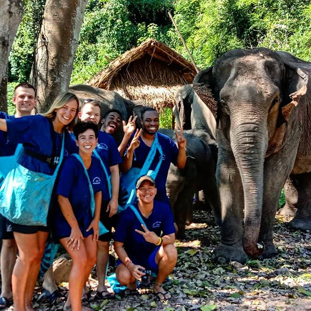 Hanging out with Elephants on the Discovi Thailand smile experience. In Chiang mai Thailand.  @discovitravel book your trip now on discovitravel.com  #discovitravel  #travel #thailand #elephant  #travel #fun #grouptravel #thailand🇹🇭 #contiki