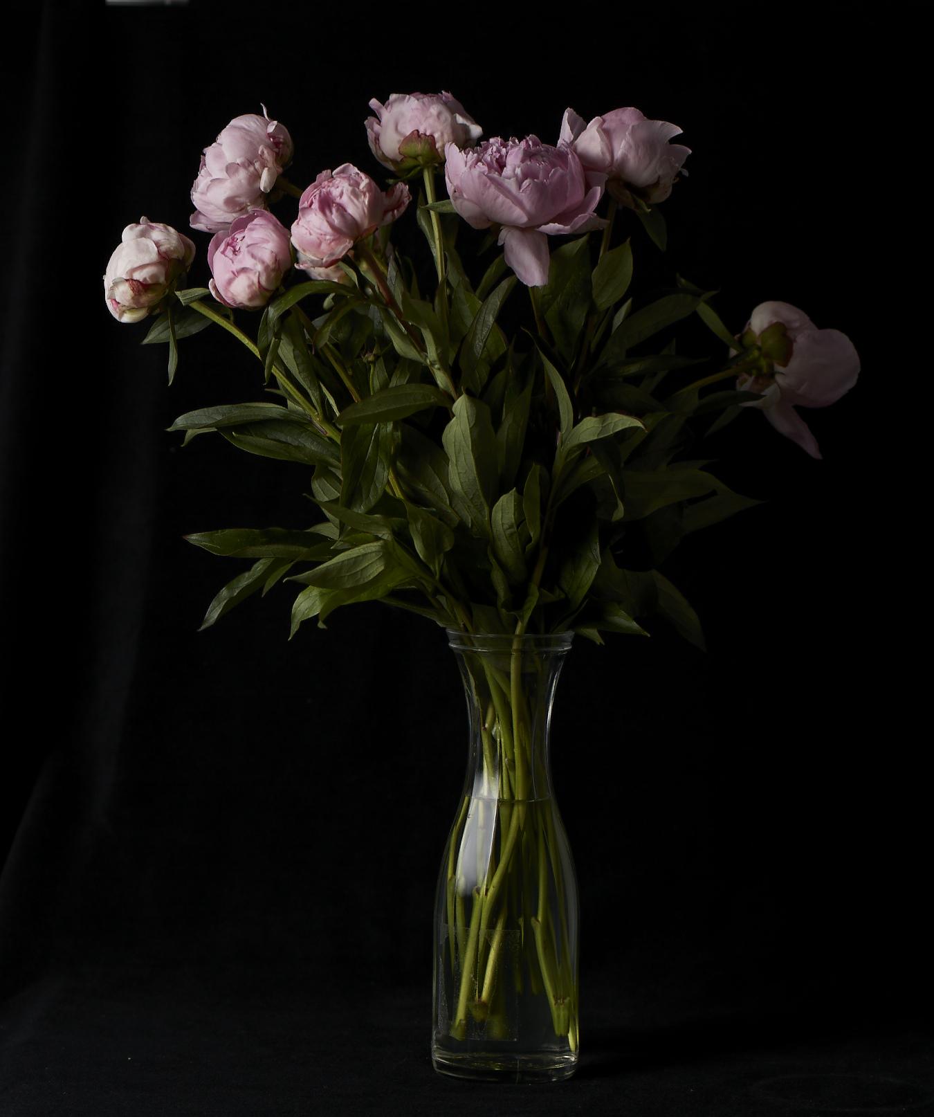 FLOWERS8630.jpg