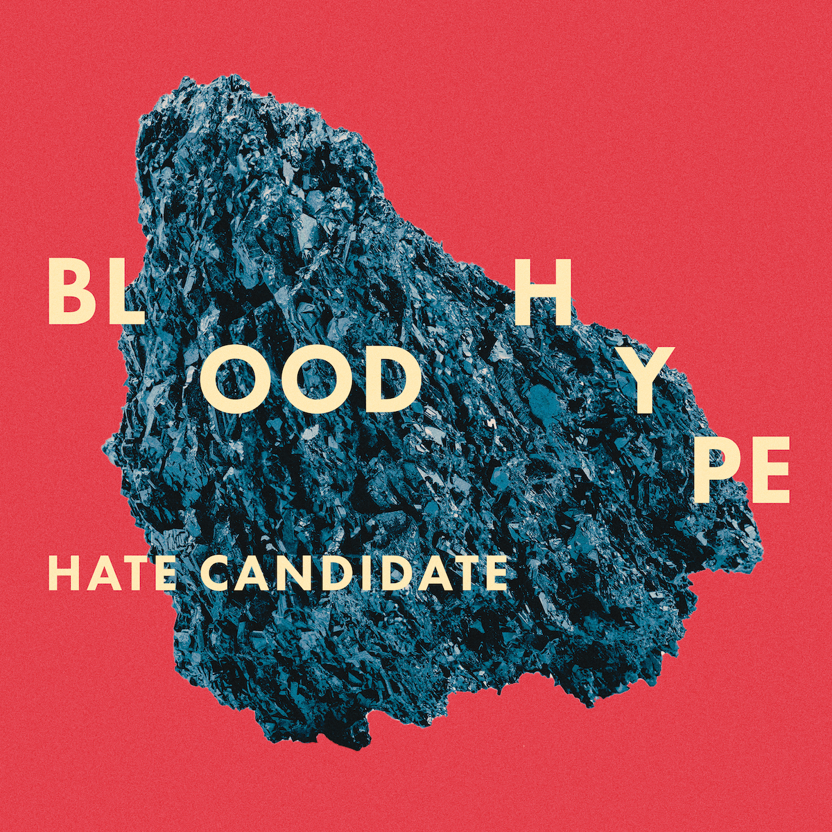 BH_COVER_HATE_CANDIDATE_COVER 1200px.jpg