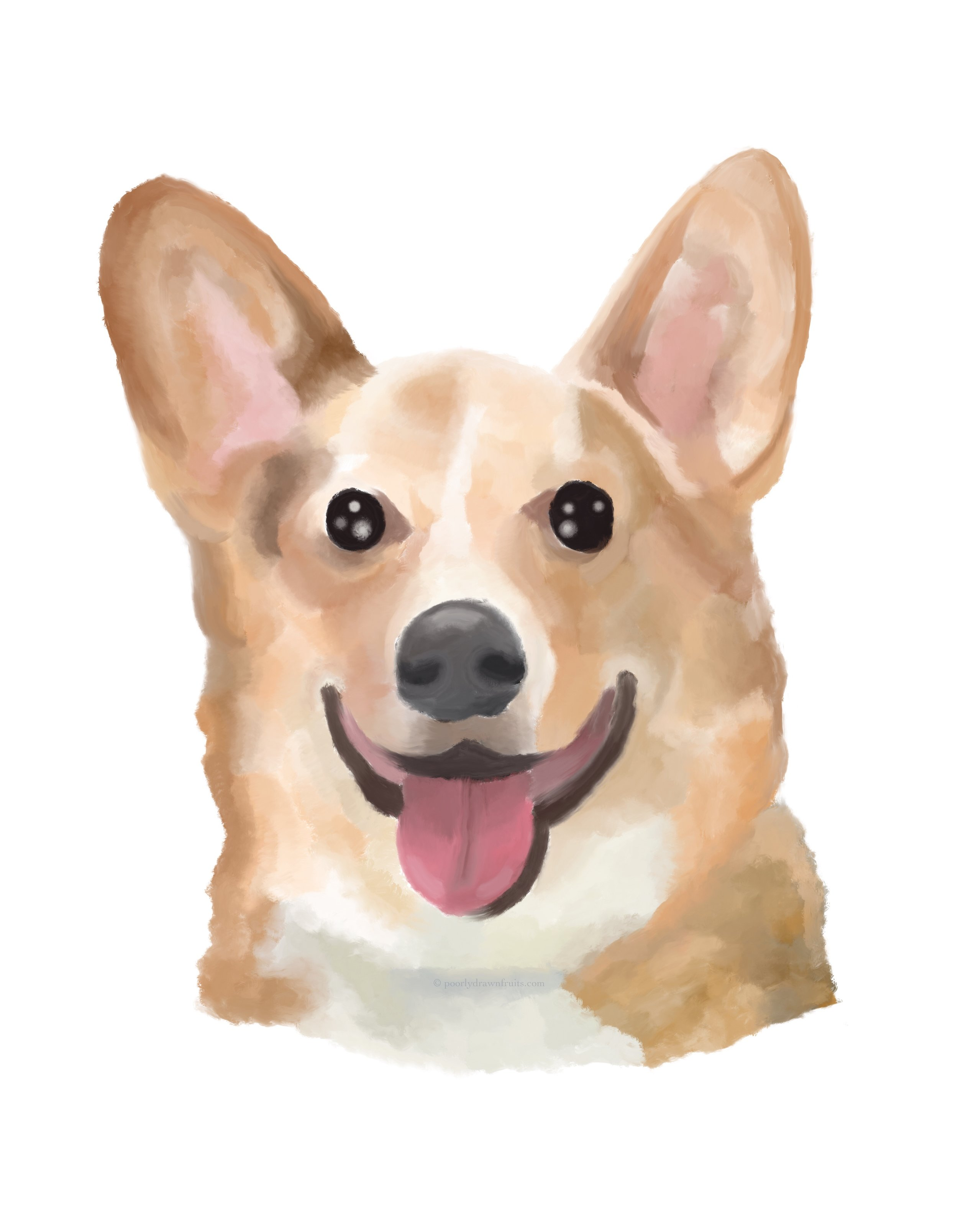 rex the corgi ipad digital painting