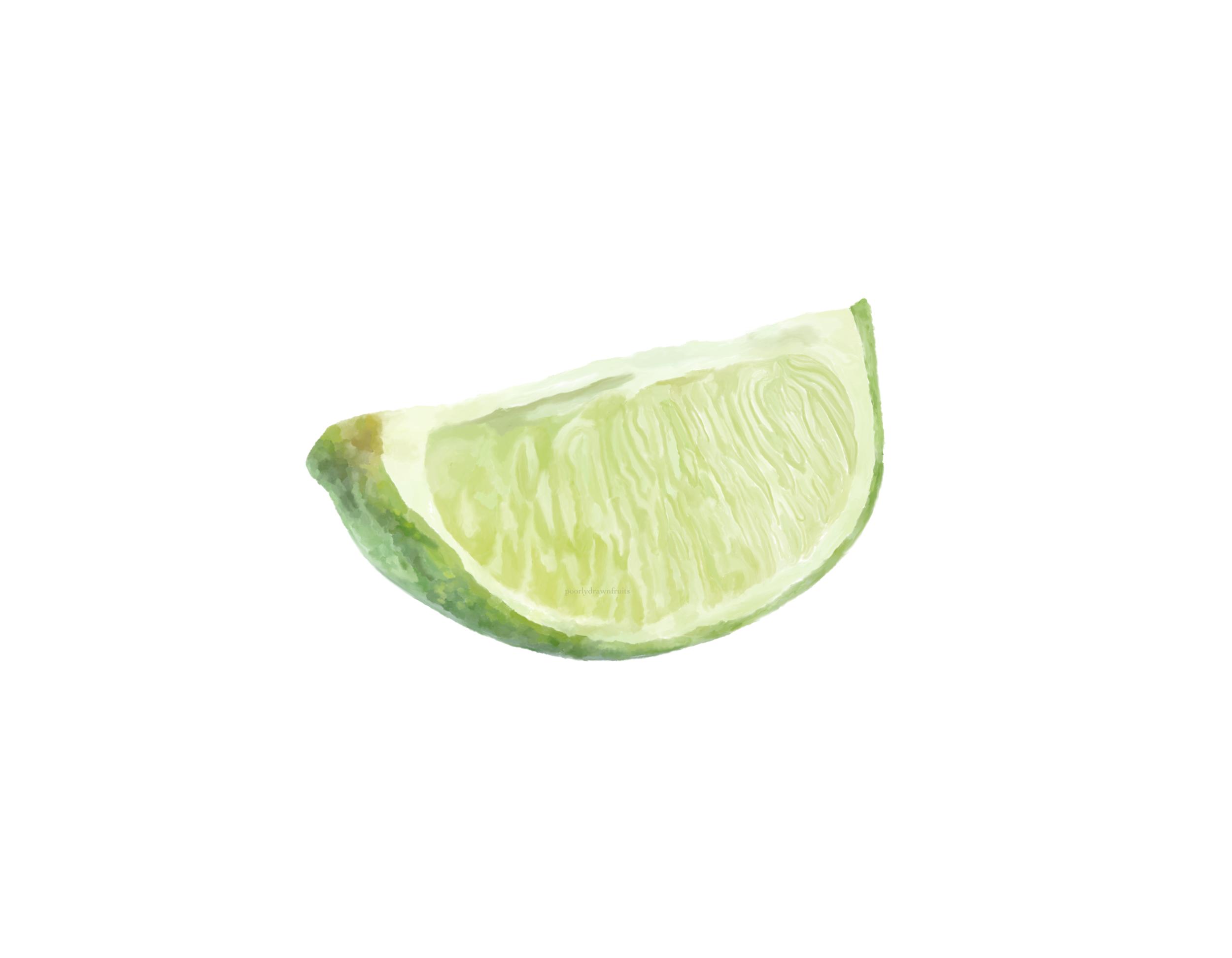 lime, limes, citrus, detail, realistic