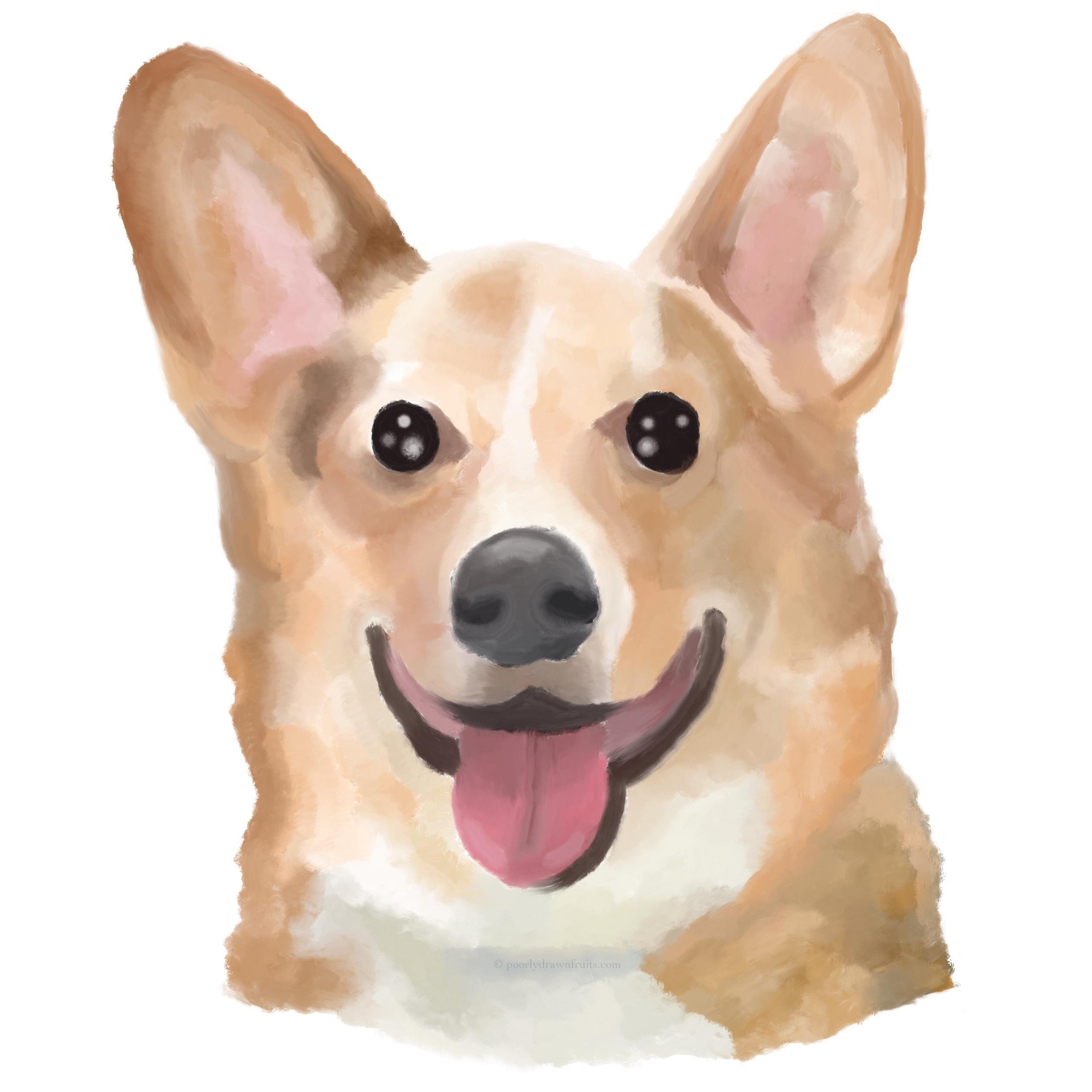 Pet Portraits - Read More…