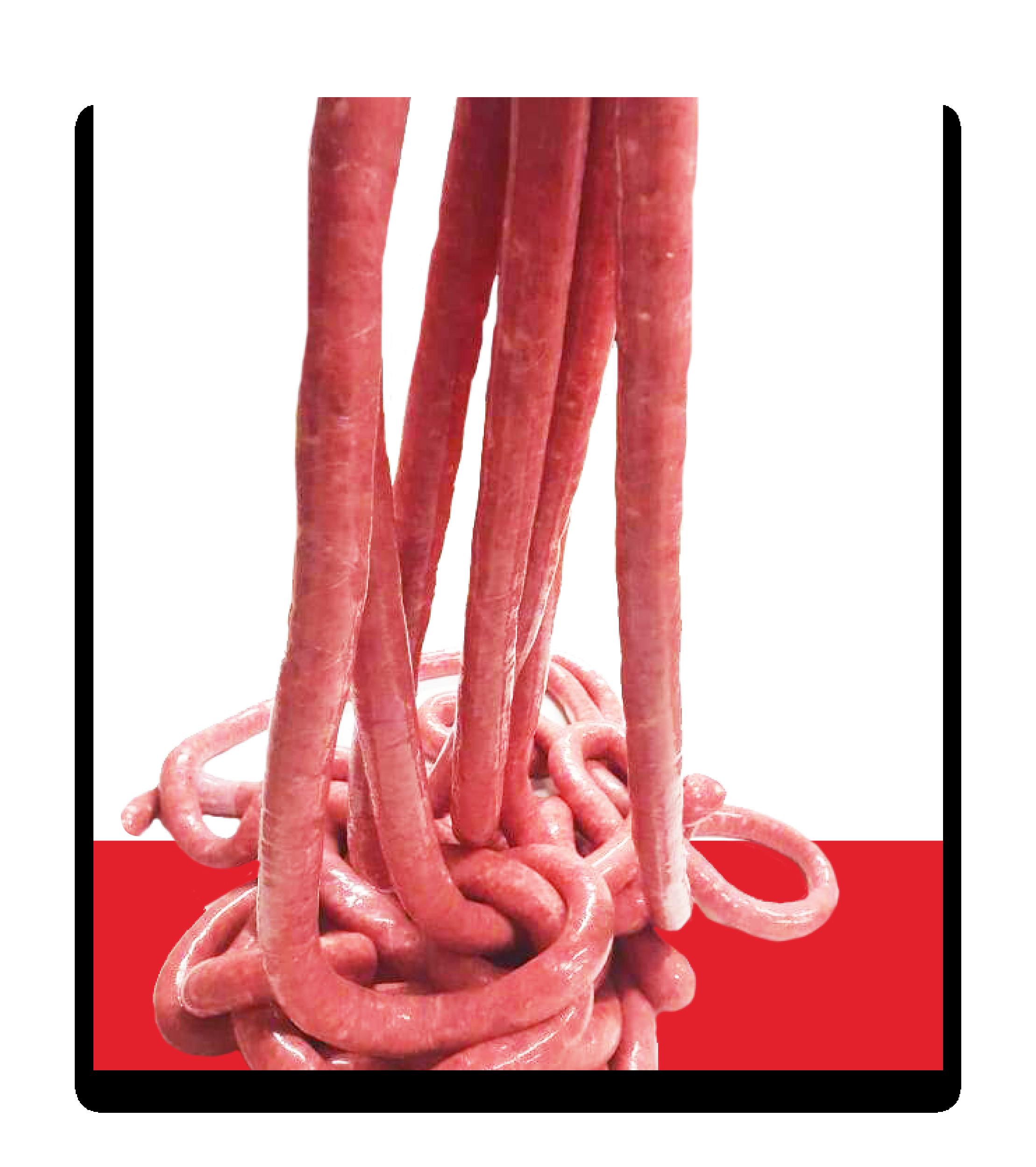 salumi spaienza produzione vendita all ingrosso supermercati alimentari supermarket grandi catene bar catering salsiccia di bra per ristoranti ingrosso salumi cuneo torino piemonte .png