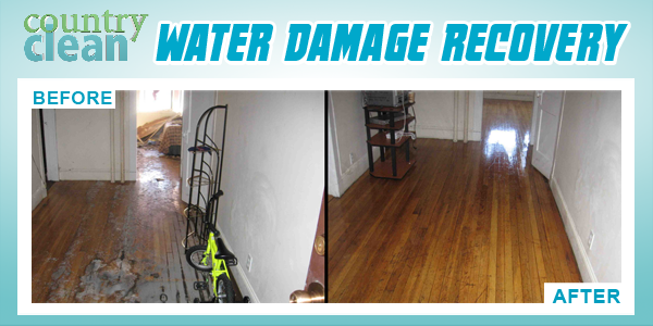 New Services Water Damage Recovery.png