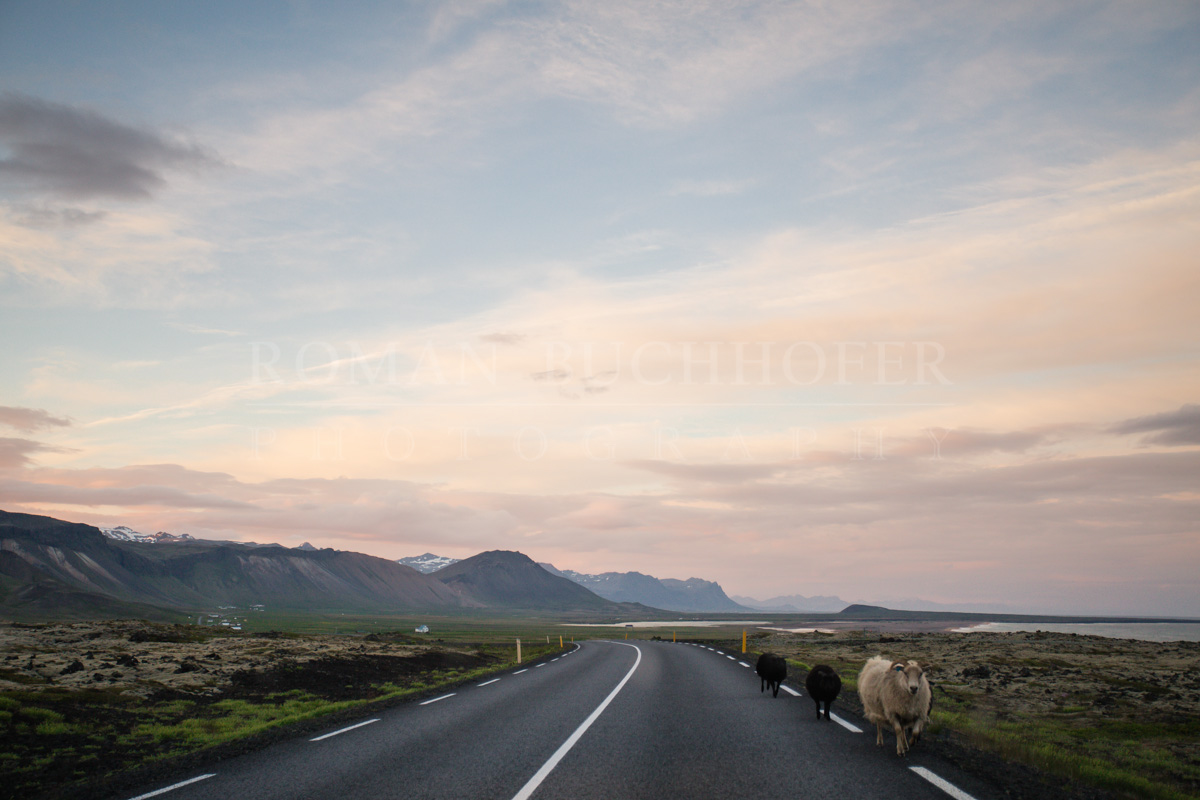 Travel-Photography-Nova-Scotia-Cape-Breton-25.jpg