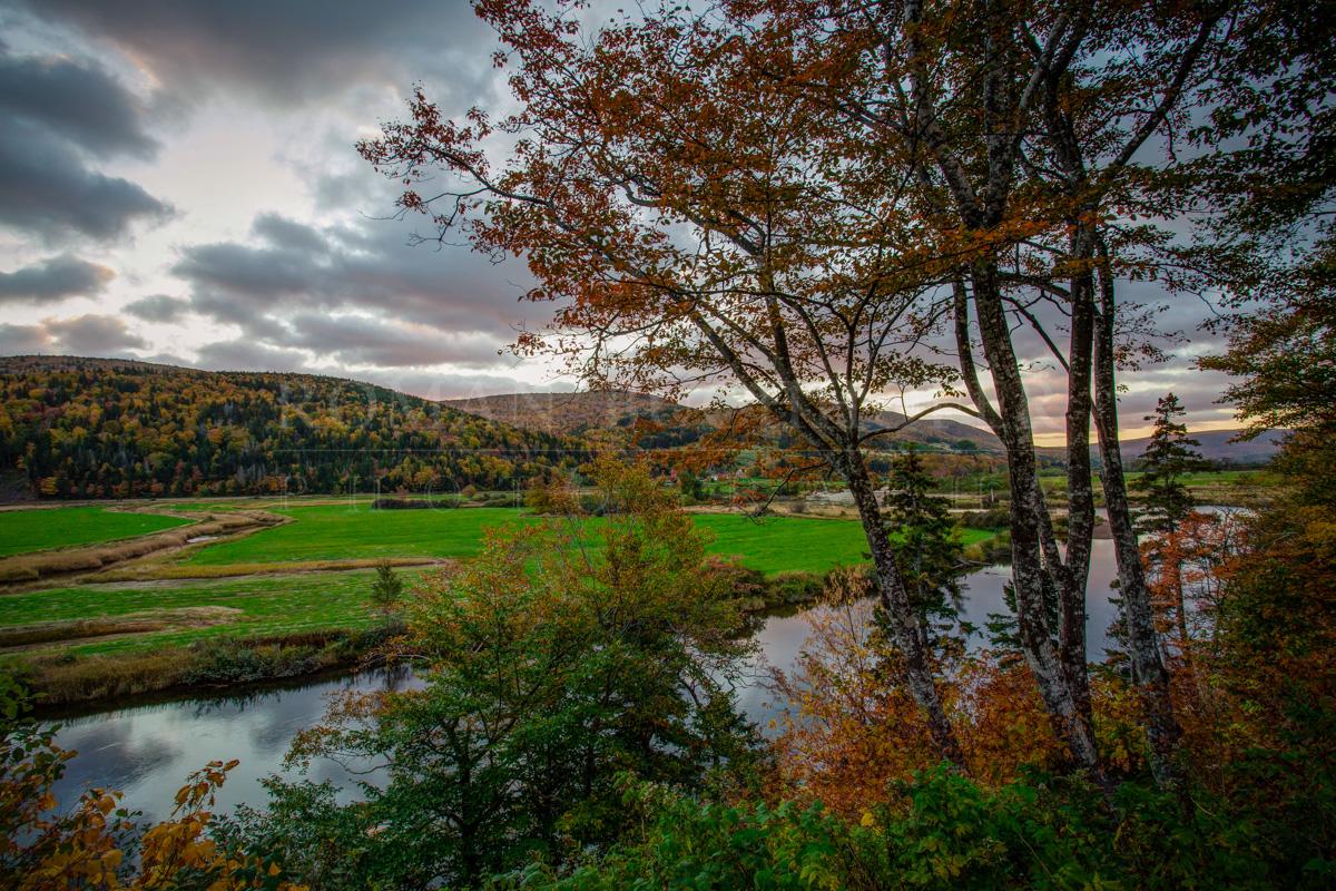margaree-fall-landscape-photography-roman-buchhofer.jpg