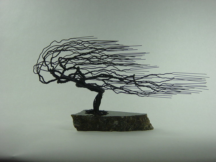 Wire Tree Mark Golomb Windswept.jpg