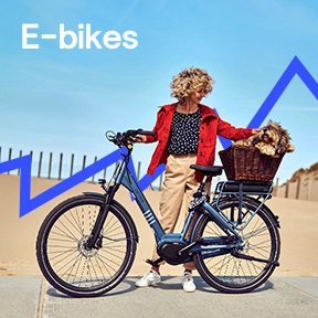 NL_1_e-bikes_desktop.jpg