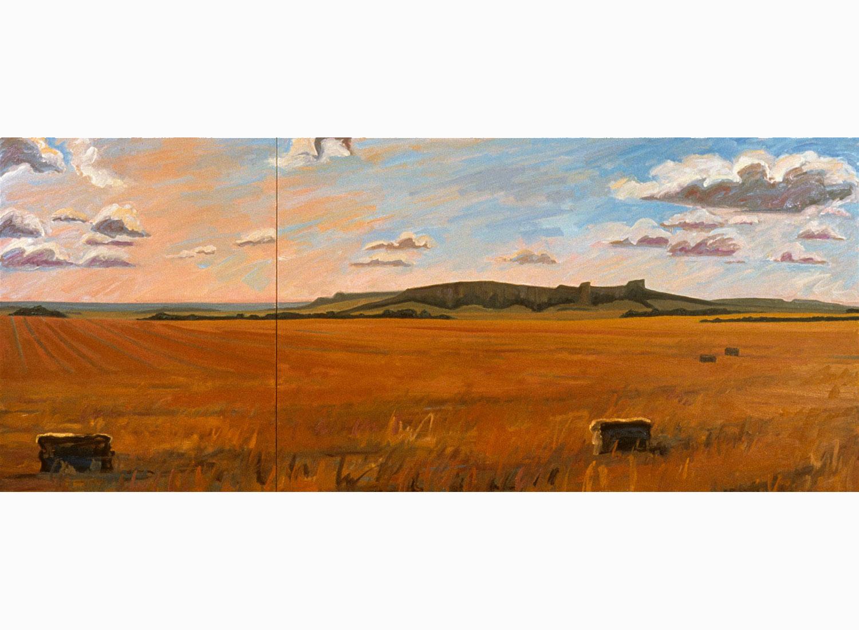 Hayfield, Pine Ridge Country, Nebraska #2