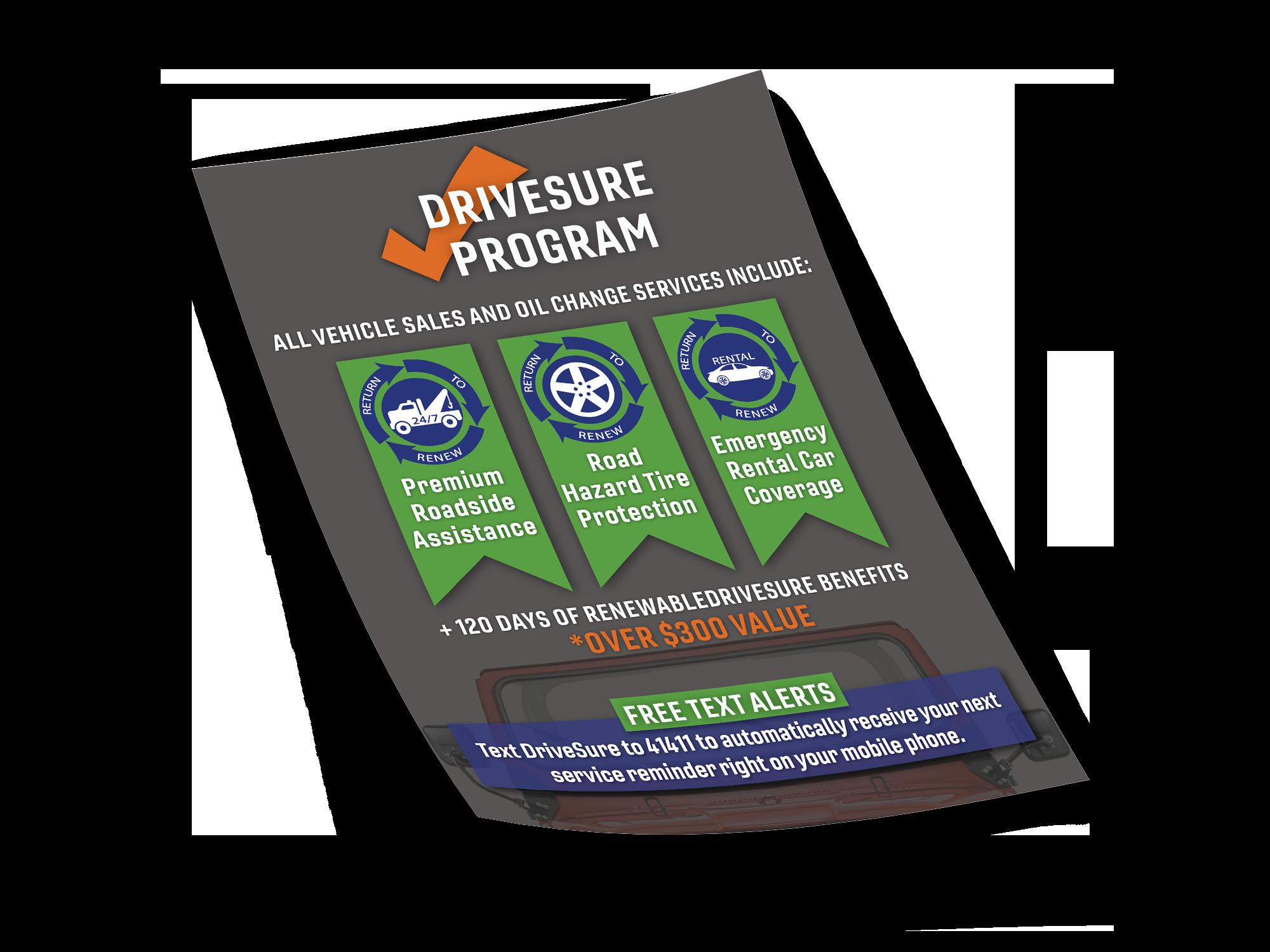 Schaffer Danhoff DriveSure Flyer.png
