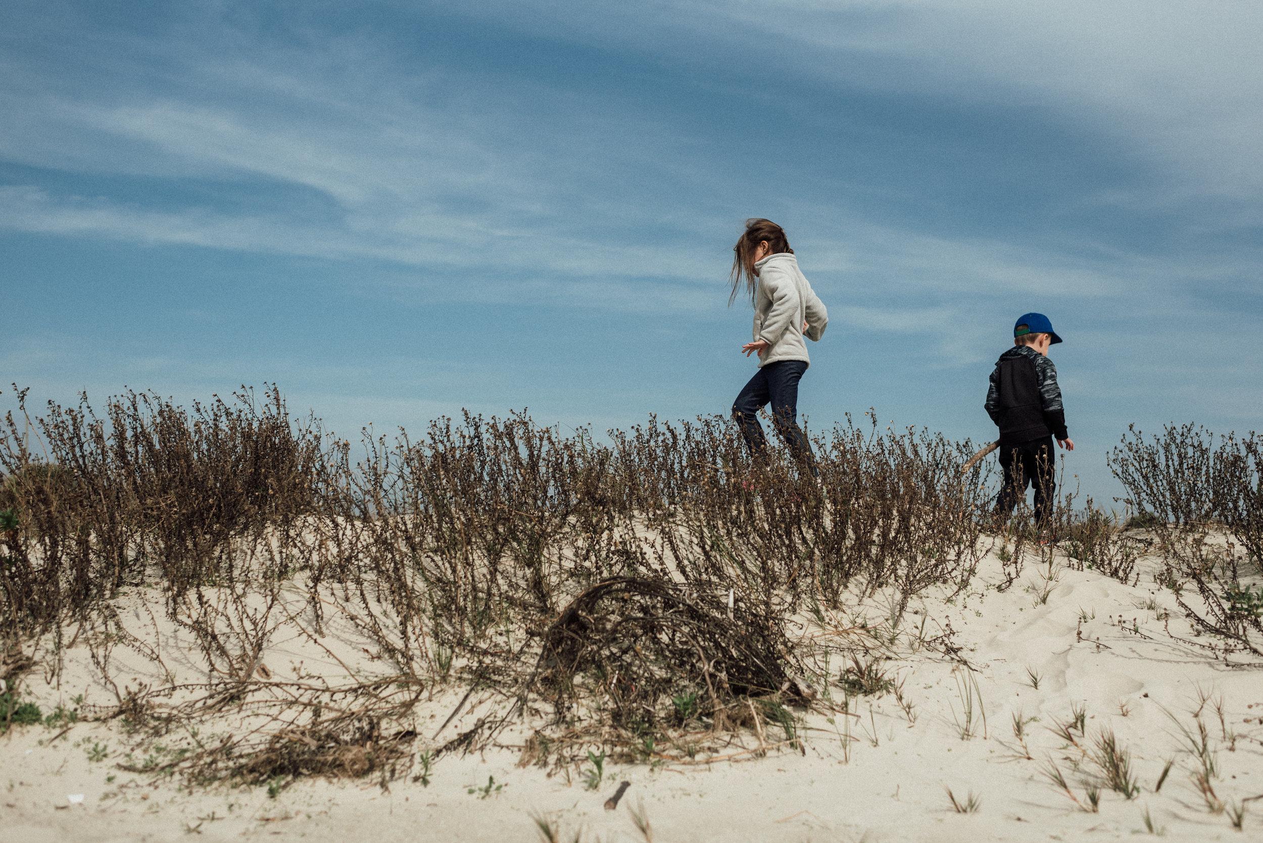 Beachside at Galveston Island State Park