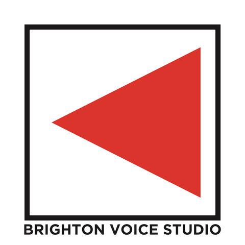 BVS Logo Johen.jpeg