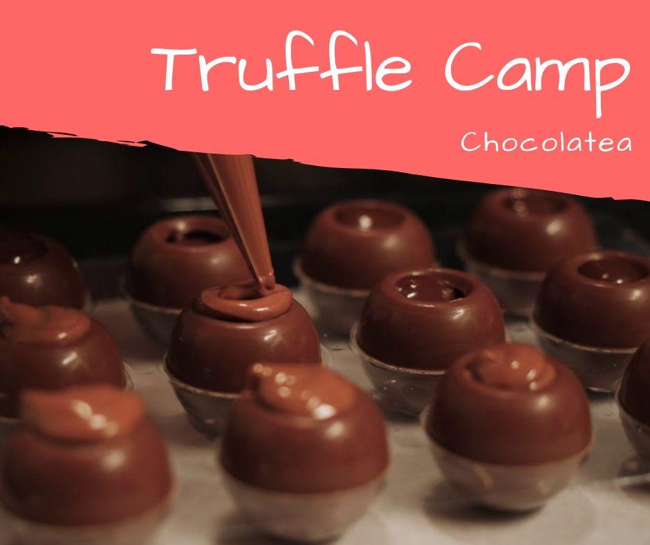 Truffle ruidongjx.commp.jpg