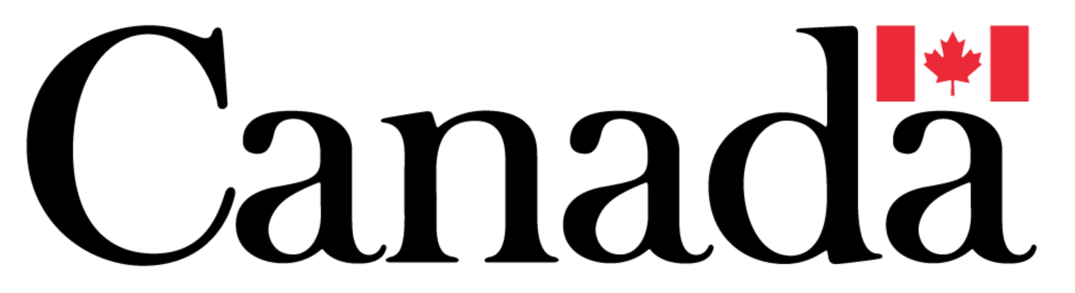 ruidongjx.comN Logo.PNG
