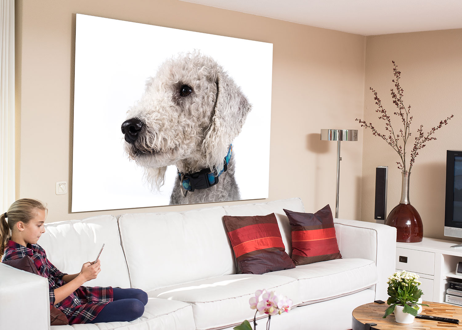 Contemporary room set with very large wall art of Bedlington Terrier dog photography