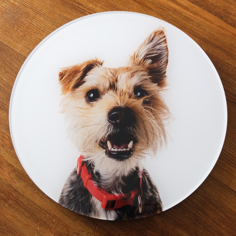 Circular acrylic print