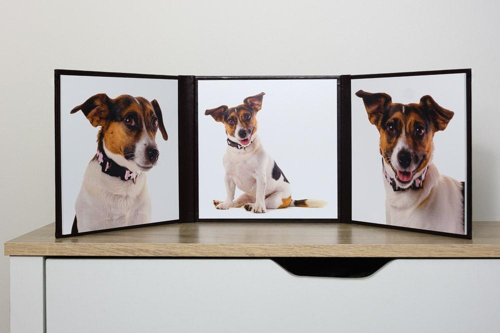 Trilogy frame full.jpg