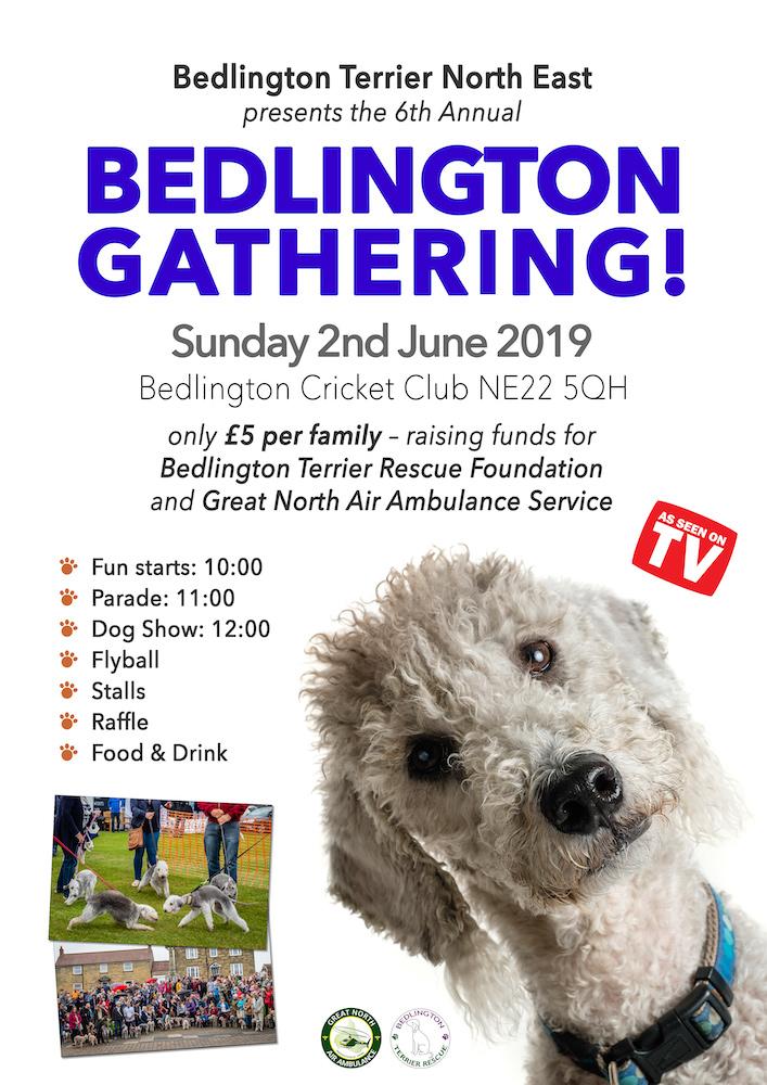 Bedlington Gathering poster 2019