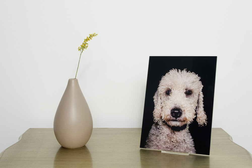Free-standing desk acrylic worth £50