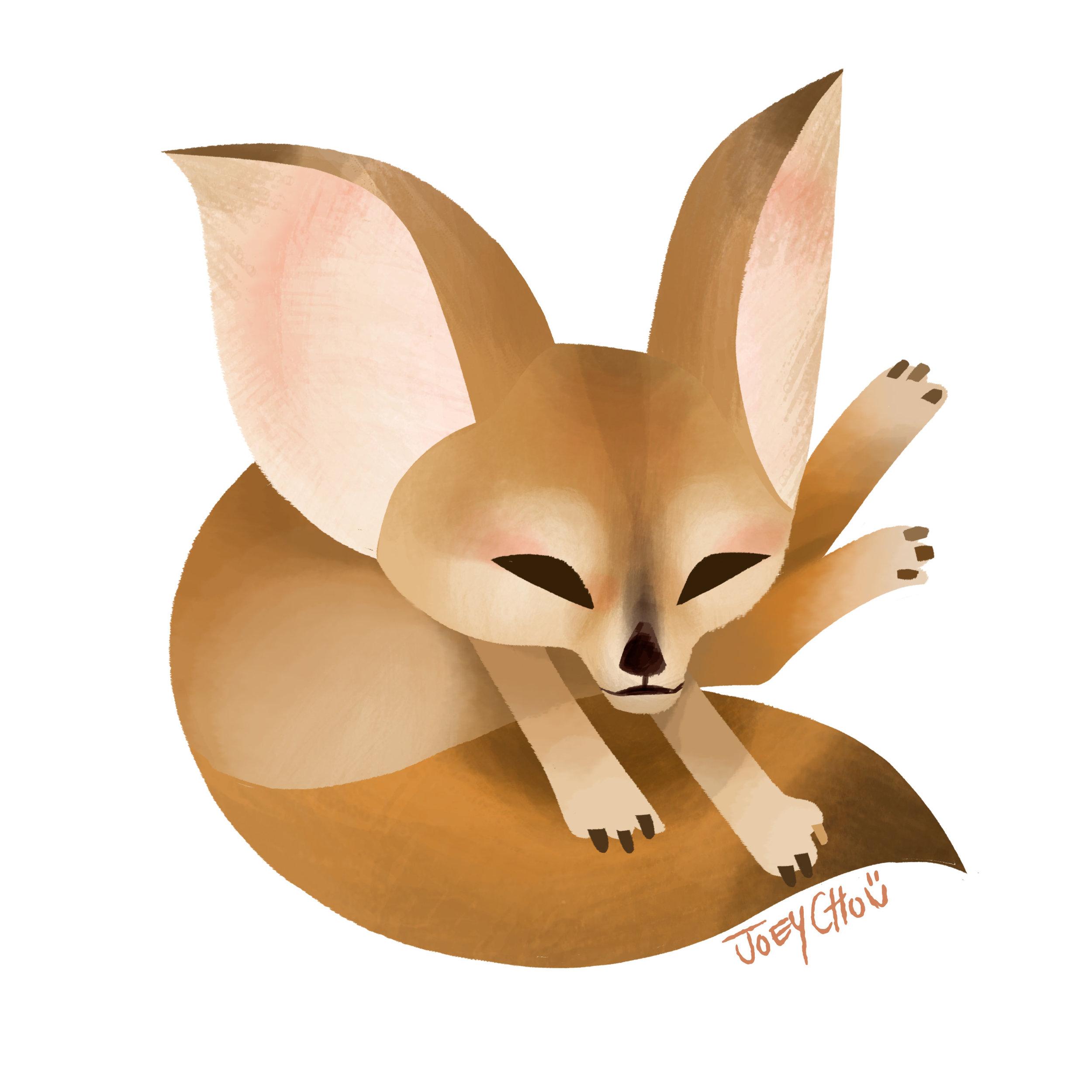 desert_fox2.jpg