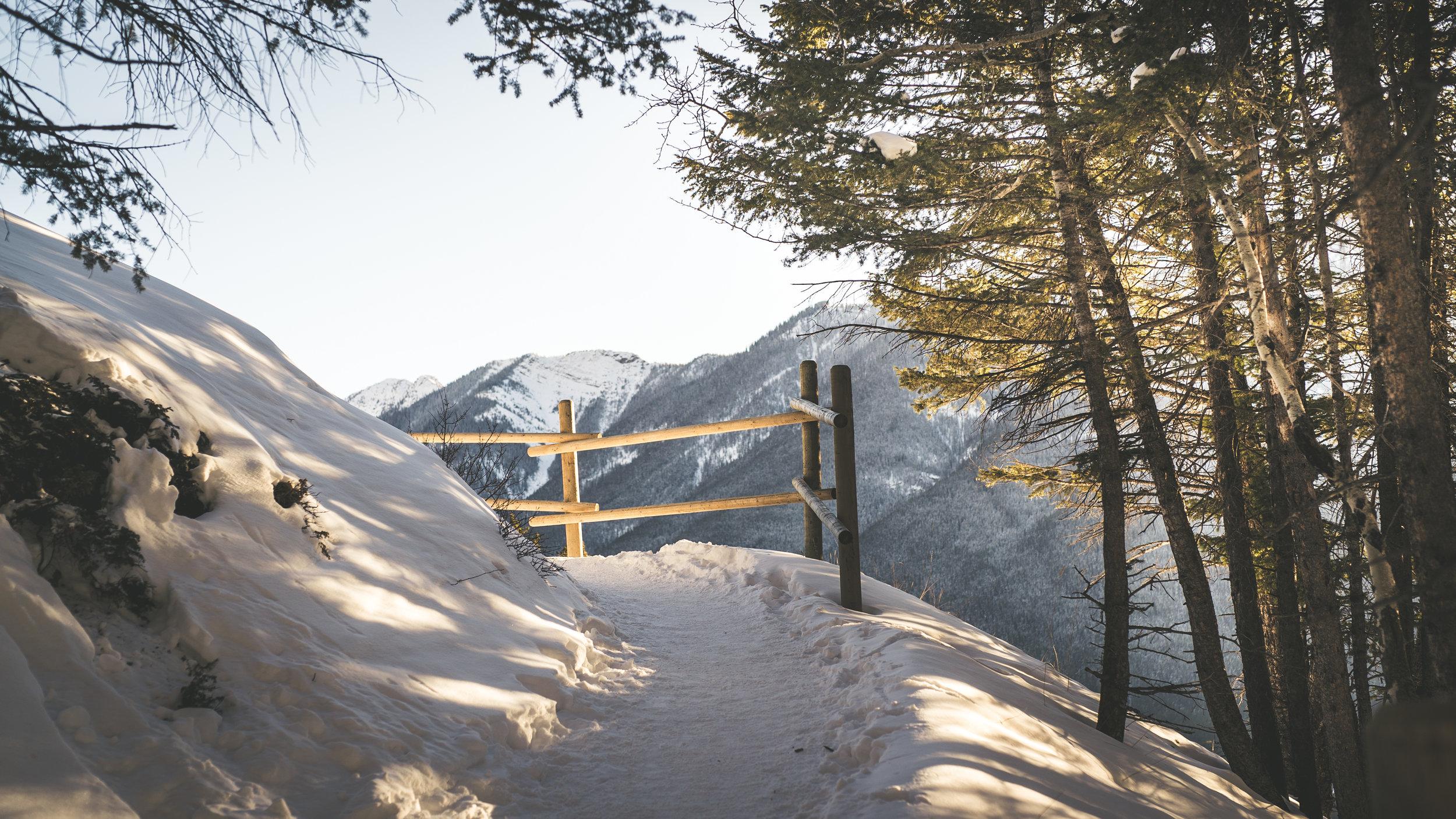 Banff Tunnel Mountain sunset walk-12.jpg