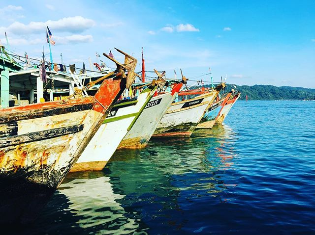 Fishing boats docked in #kotakinabalu ahead of turtle excluder device trials - run by Department of Fishing Sabah and the Marine Research Foundation. By excluding turtles fishers can focus on target catch while minimizing bycatch #turtle #turtleexcluderdevice #nature #natureza #biodiversity #biodiversidad
