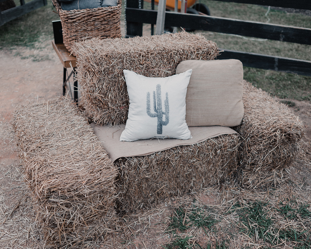 Country Western themed party 9.jpg