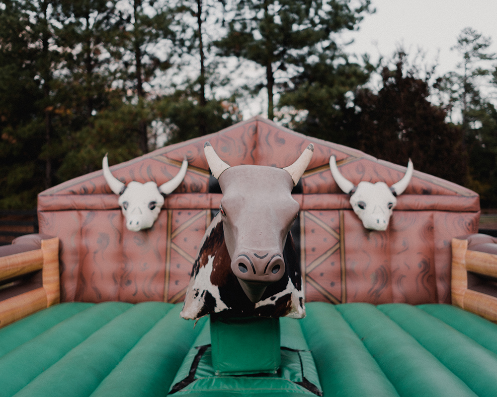 Country Western themed party 15.jpg