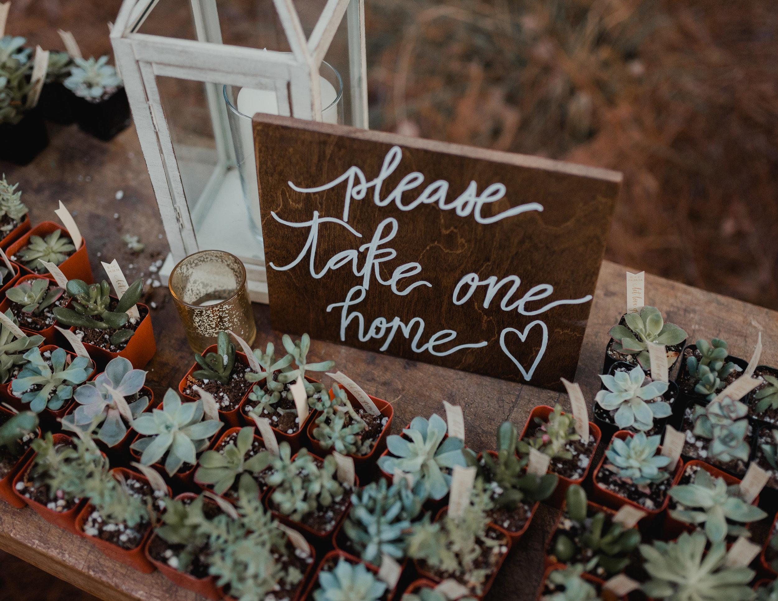 Modern garden wedding CLT whitehead manor 71.jpg