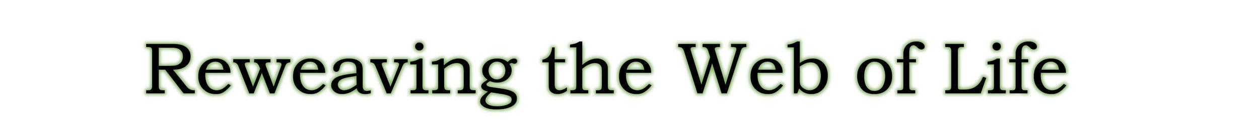 web-banner-green.jpg