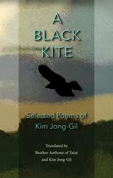 A Black Kite
