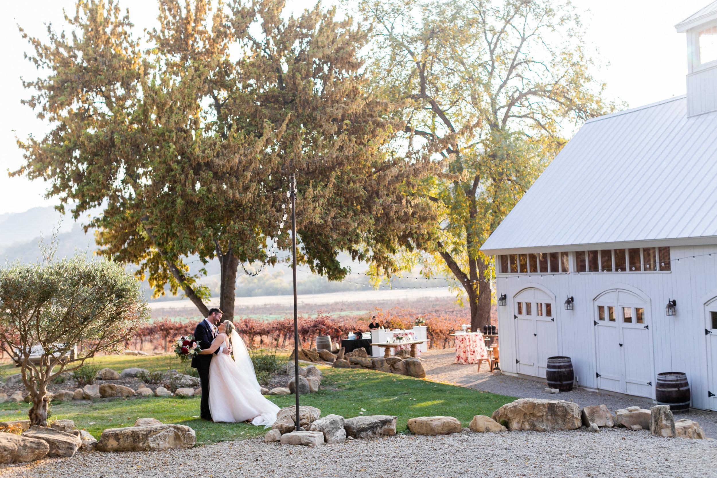 cameron_ingalls-hammersky_vineyards-studebaker-0389.jpg