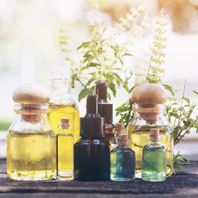 oils alicia.jpg