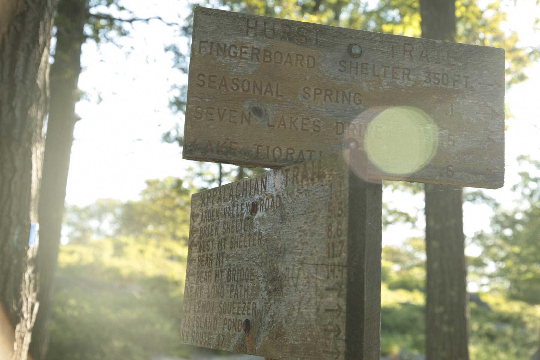 PUBLIC TRANSIT SERIES #5 - Harriman State Park, Southfields, New York