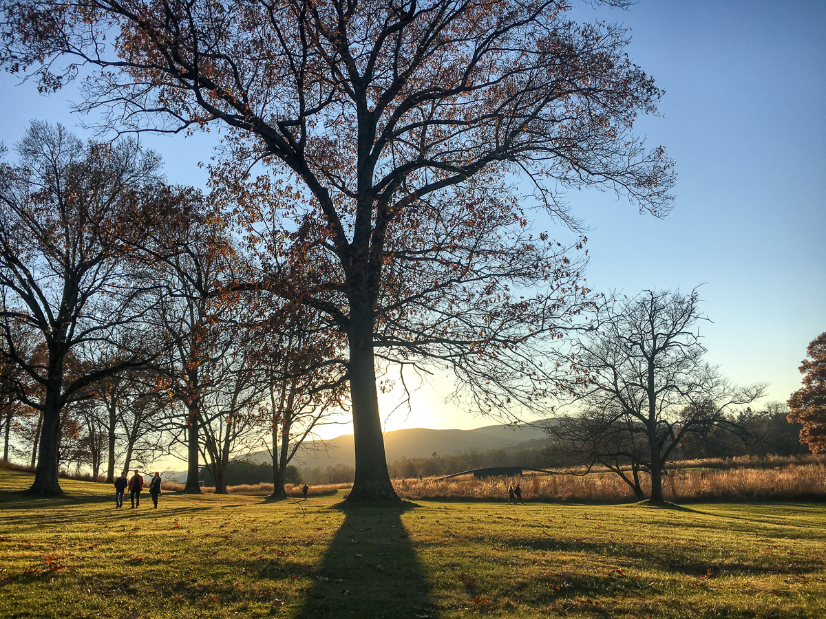 Opting outside with my family on Black Friday 2017 at Storm King Art Center, Cornwall, NY