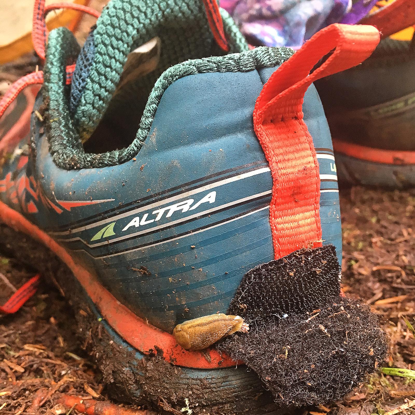 Long Trail Slugs.jpg