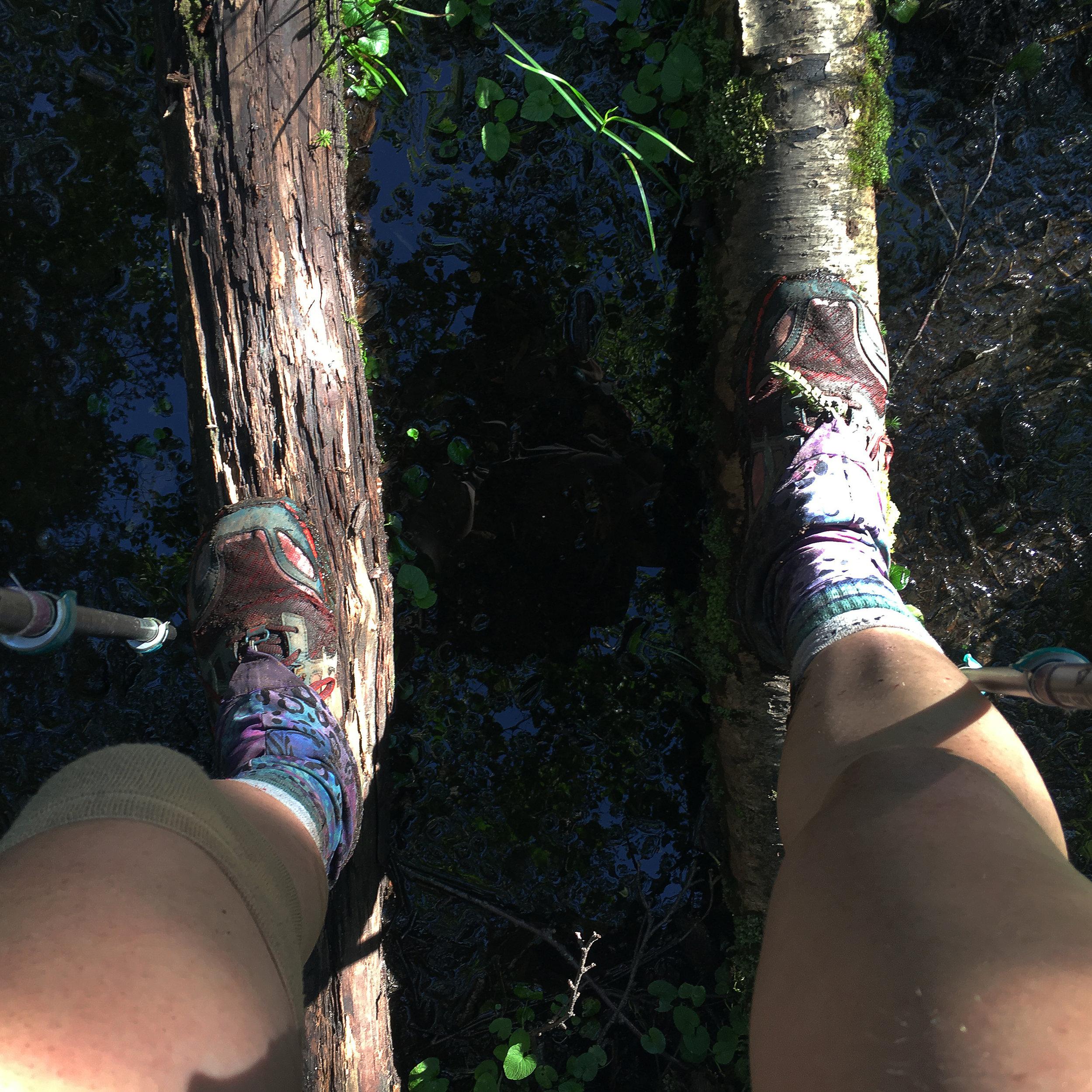Long Trail Mud.jpg