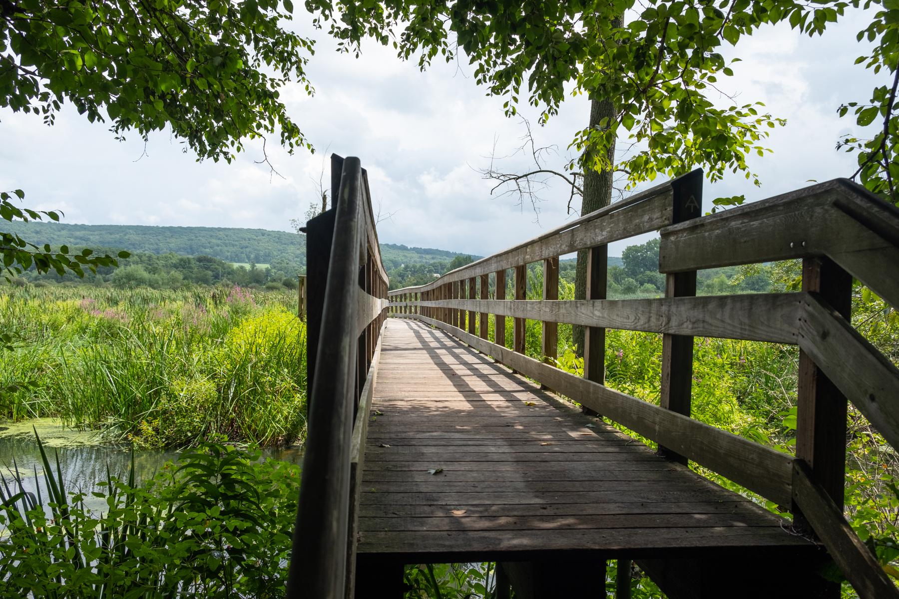 PUBLIC TRANSIT SERIES #14 - Appalachian Trail, Pawling, NY