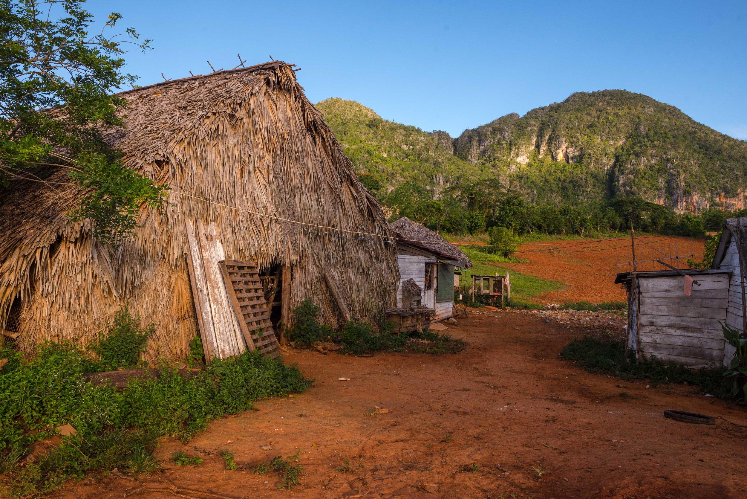 Secadora - traditional tabaco-drying hut.
