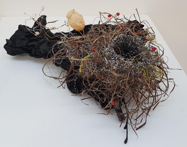 Untitiled Birds Nest.jpg