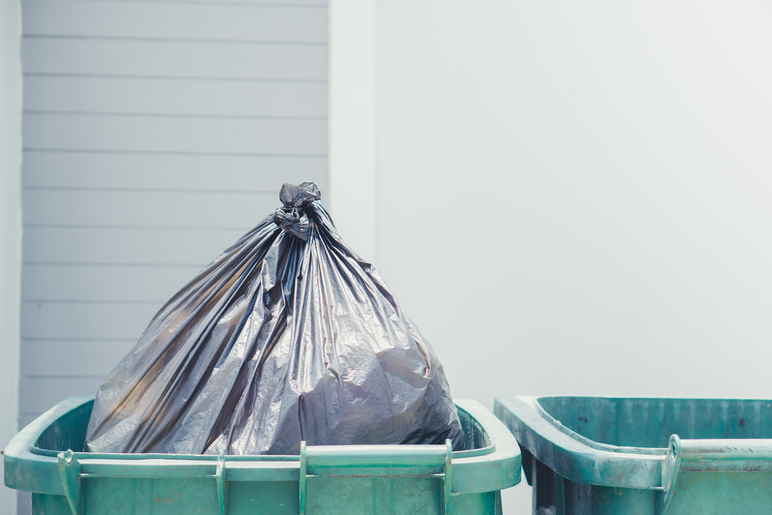 <p><strong>01. PERFORM A WASTE AUDIT</strong></p>