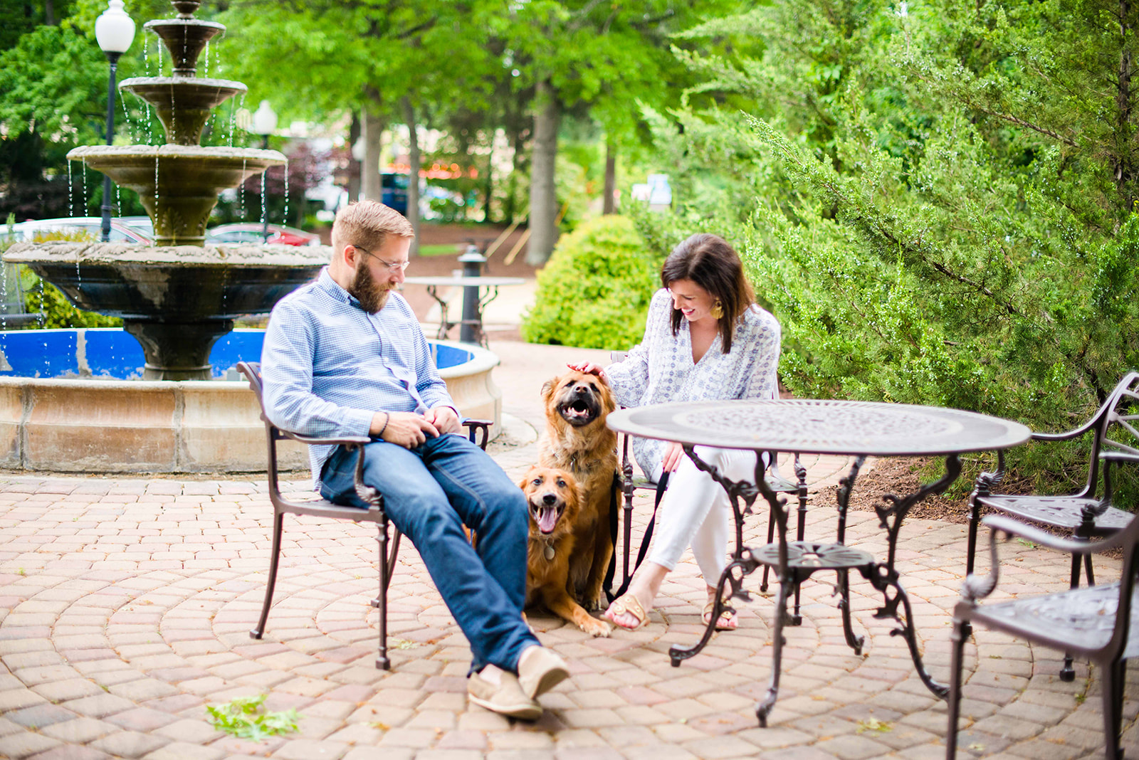 photos with dogs courtesy of Meghan from I'm Fixin' to blog.