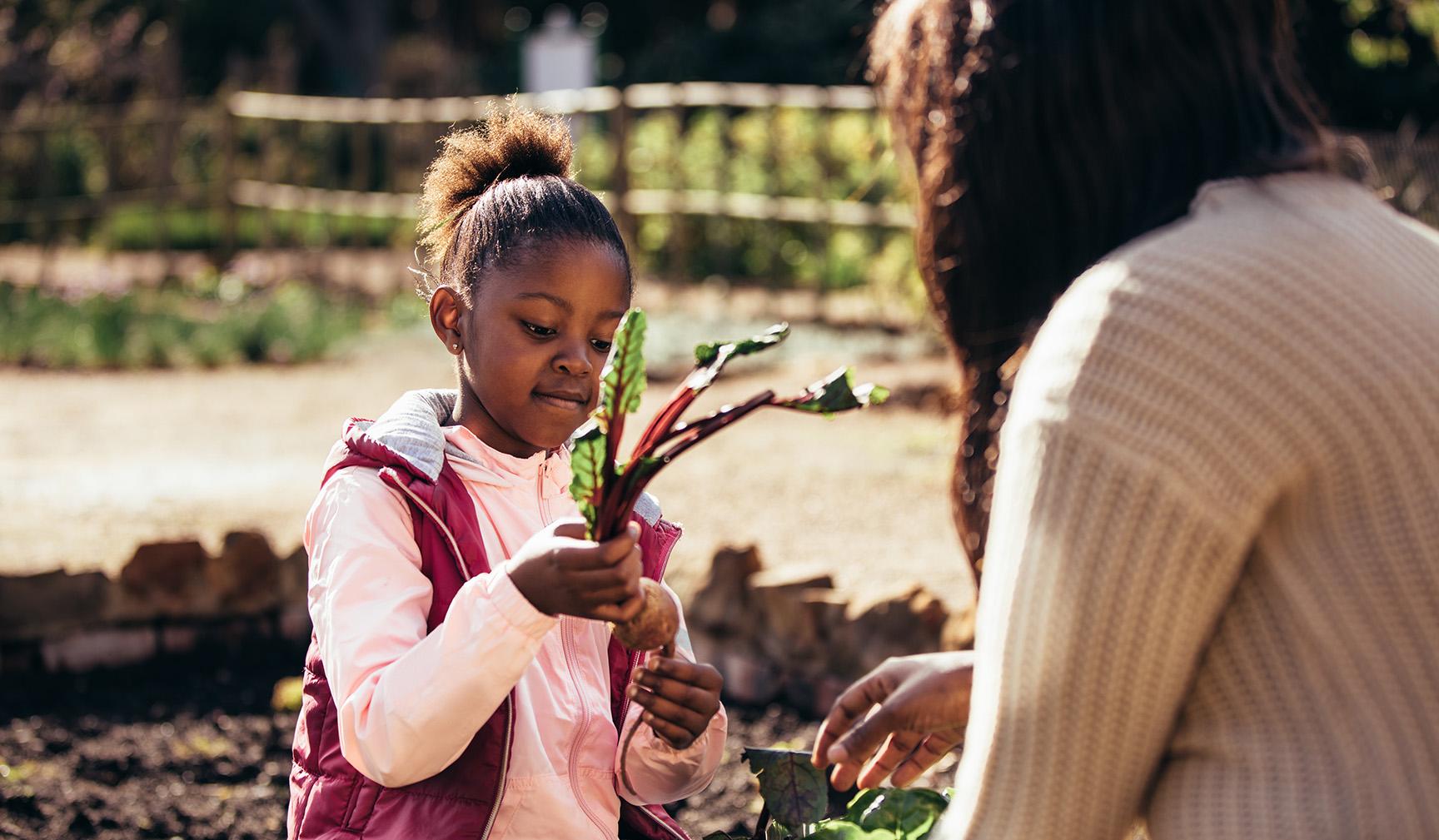 para_youth_farm_hilltop_urban_farm_pittsburgh.jpg