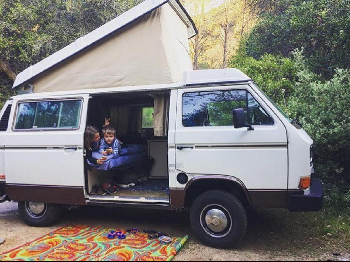 Westie in full camping mode!