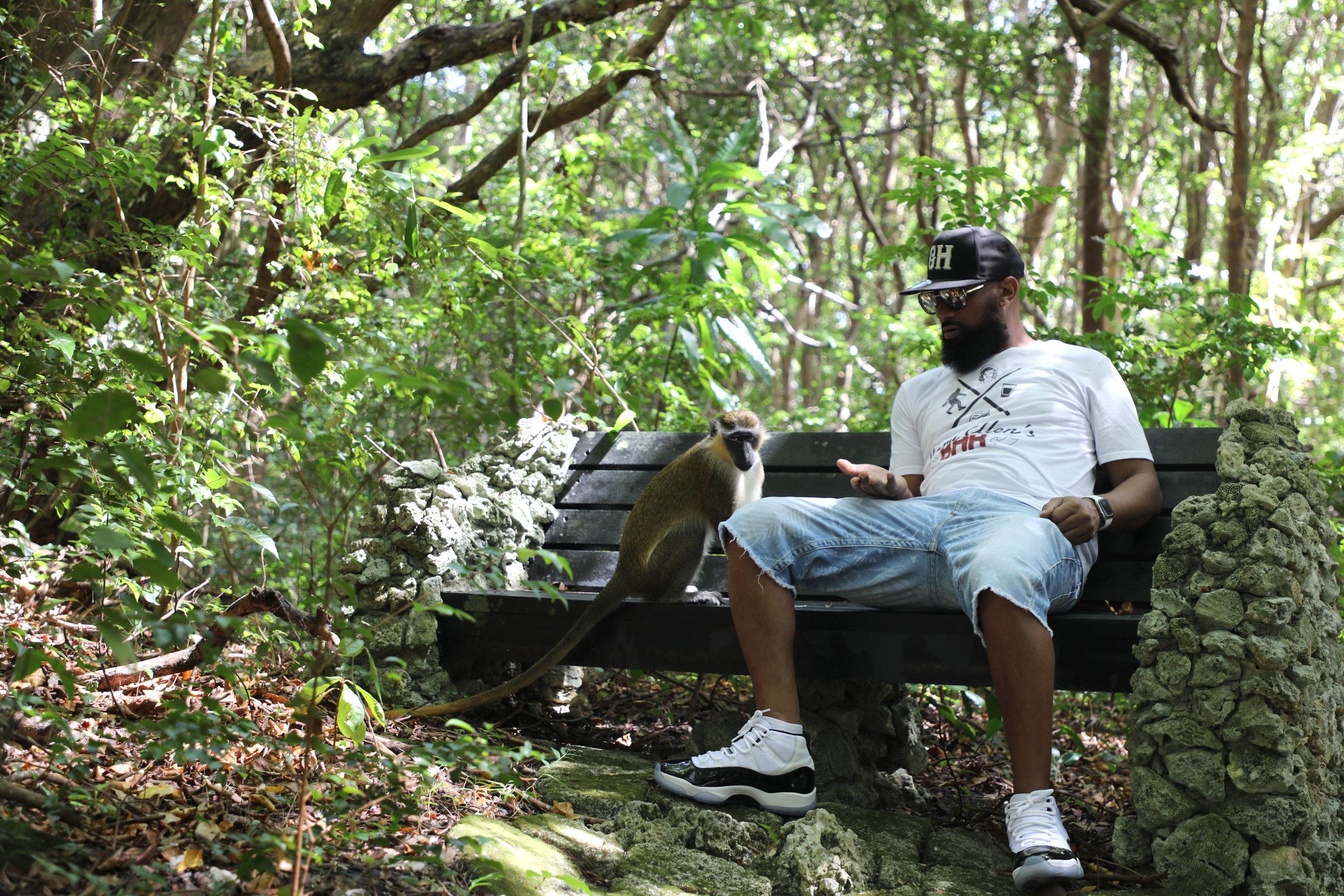 MJ monkey woods .jpg