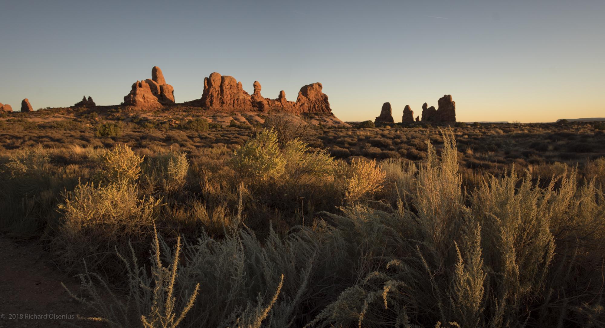 Desert_04