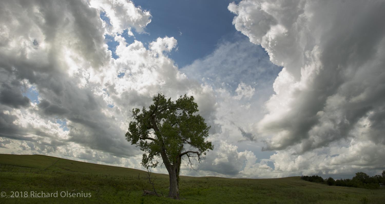 Prairie Sky-3