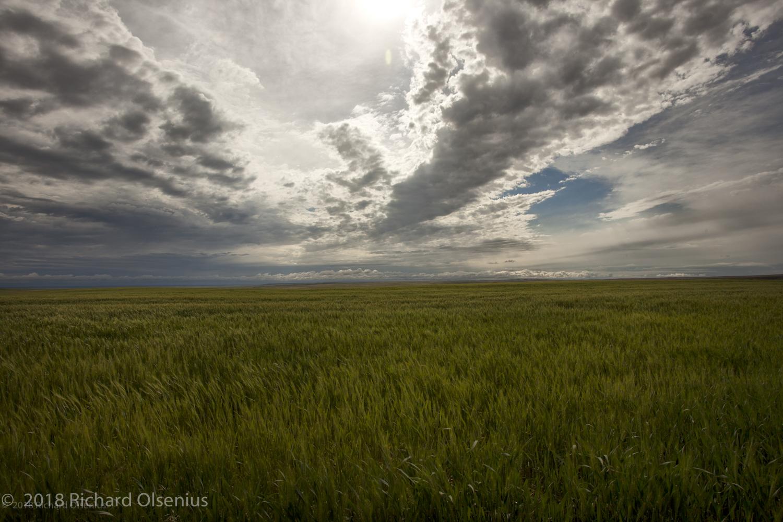 High Plains-3