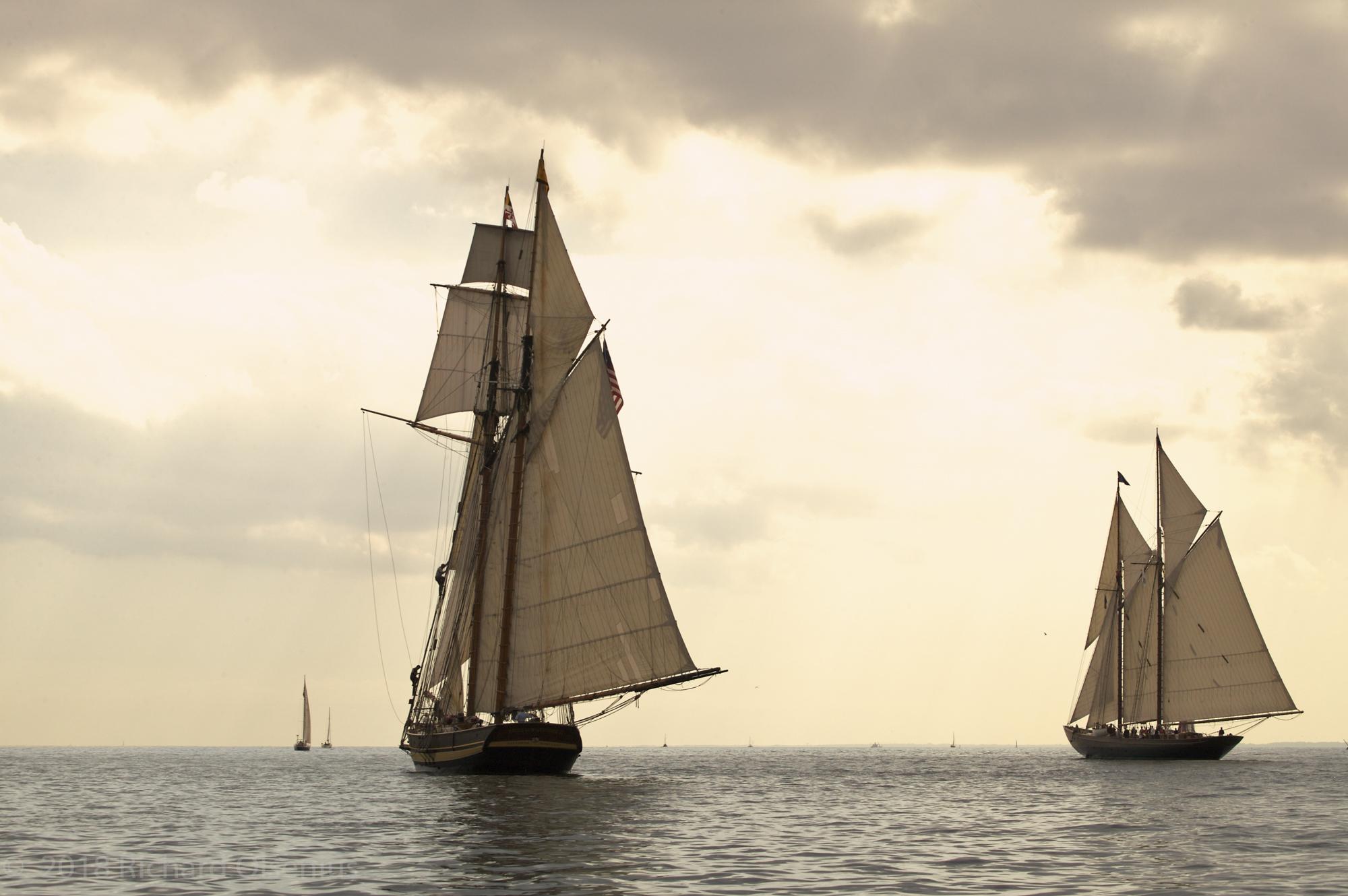Tall Ships-23